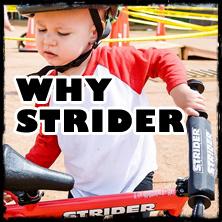 Why Strider